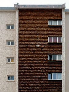 фасад из дерева